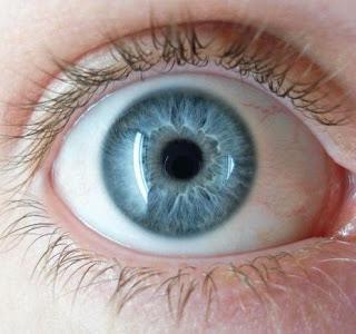 Como Eliminar Las Miodesopsias de los Ojos